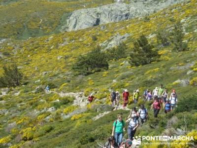 Ruta senderismo Peñalara - La Granja de San Ildefonso; botas senderismo verano
